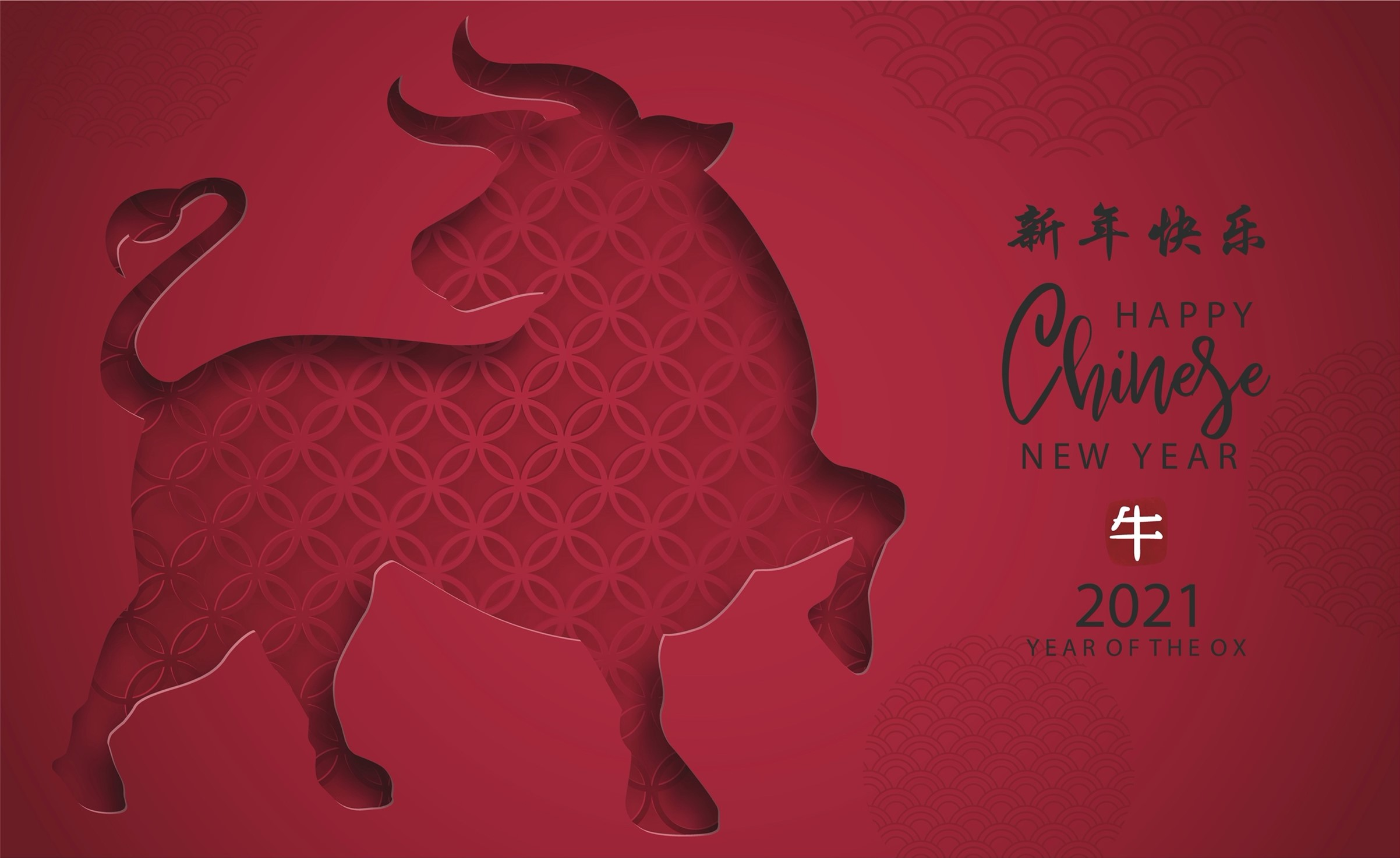 Personalised T-Shirt Printing Design Ideas for Lunar New Year